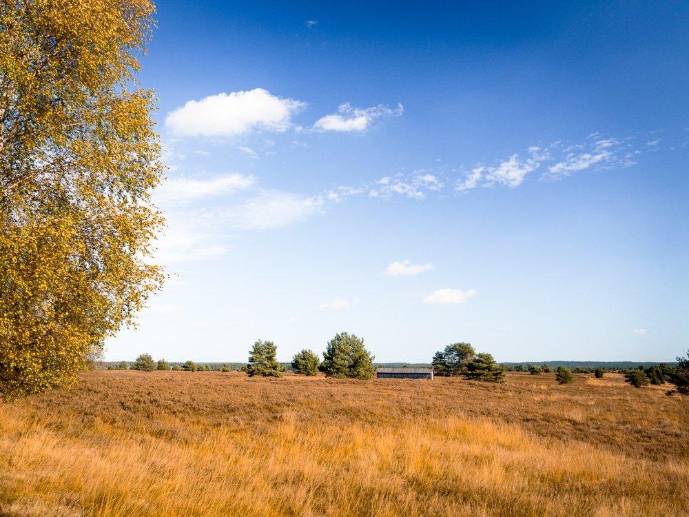 10.19.13.38.58 - Herbst 14 neu.jpg