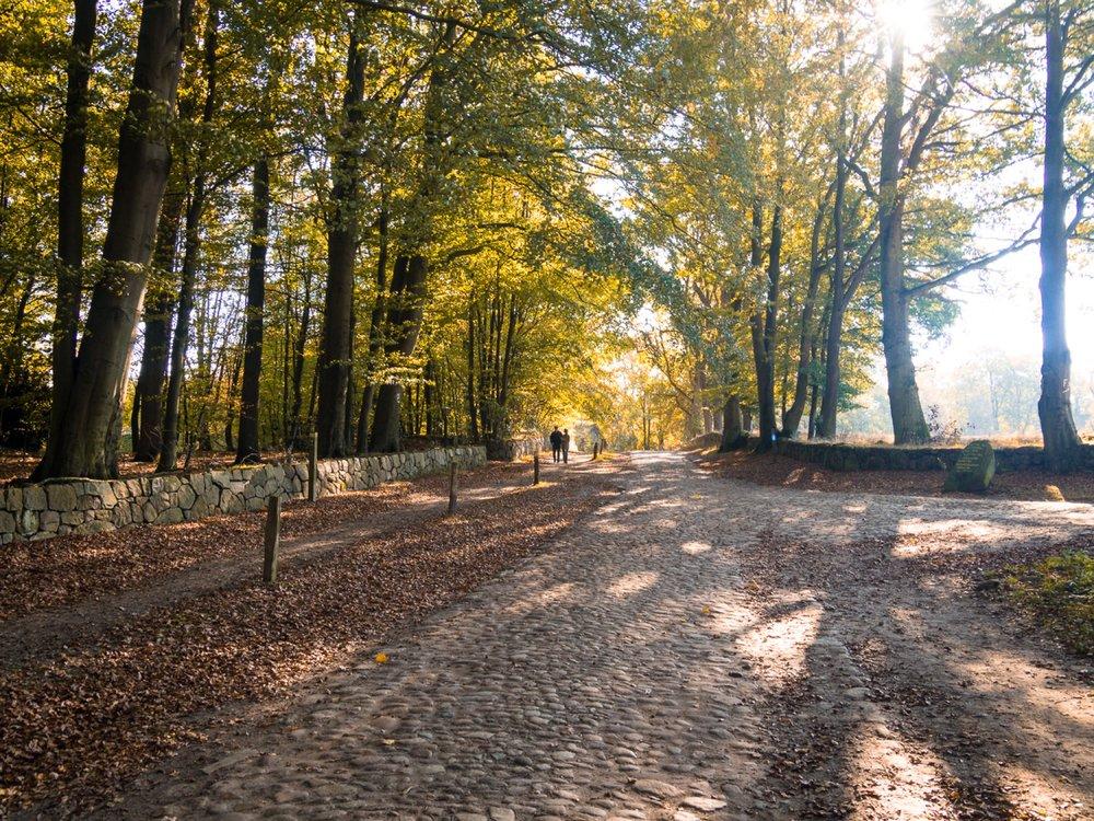 10.19.12.53.44 - Herbst 14 neu.jpg