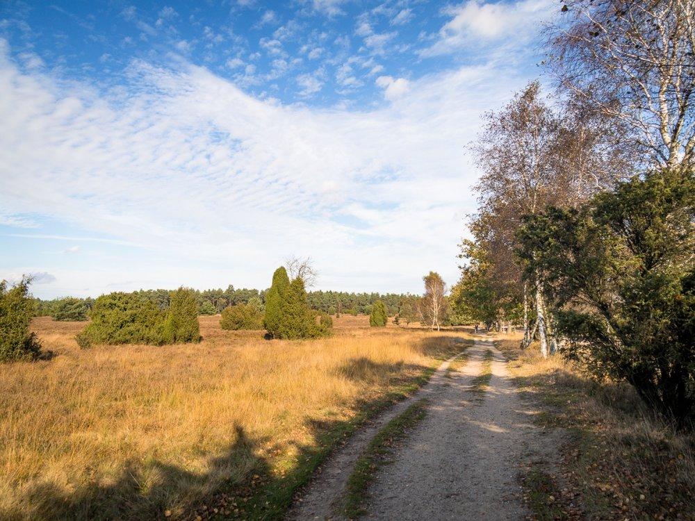 10.19.13.32.36 - Herbst 14 neu.jpg