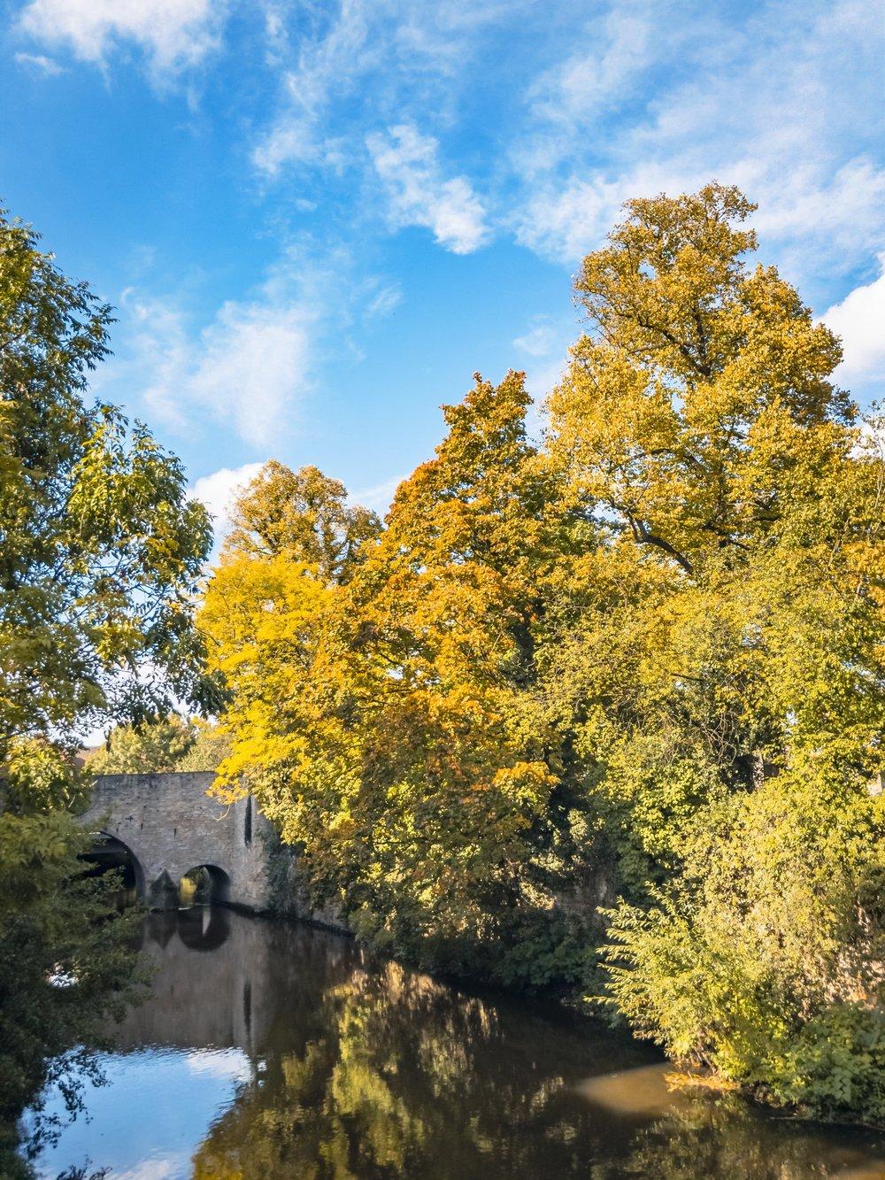 APC_0083-hdr-2 - Herbst ShotoniPhone Autumn Blätter Leaves Sun Sonne Light Threes Licht Bäume Baum Stadt Osnabrück.jpg