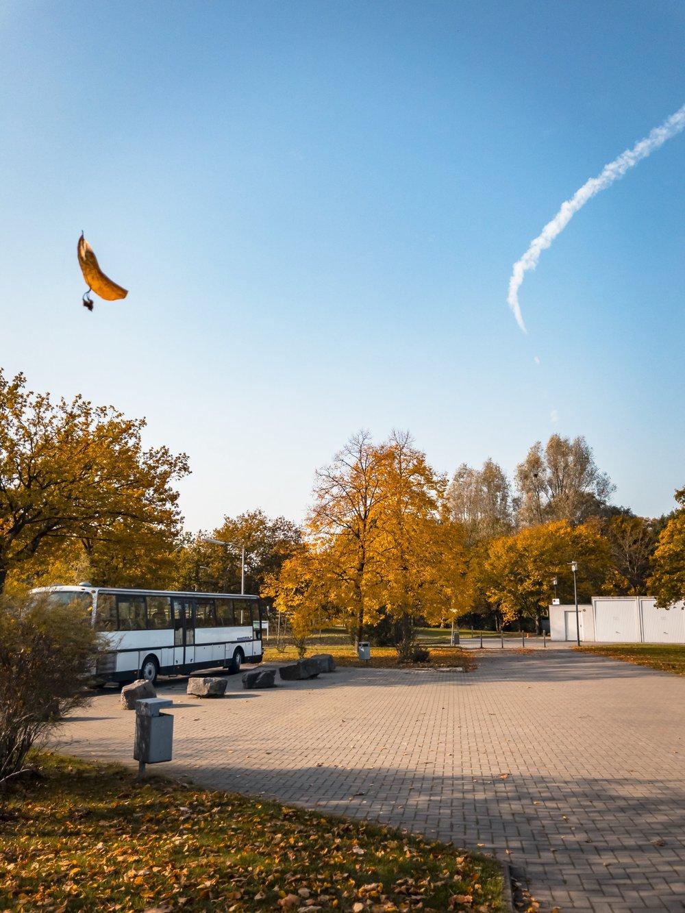 APC_0411-hdr - Herbst ShotoniPhone Autumn Blätter Leaves Sun Sonne Light Threes Licht Bäume Baum Stadt Osnabrück.jpg