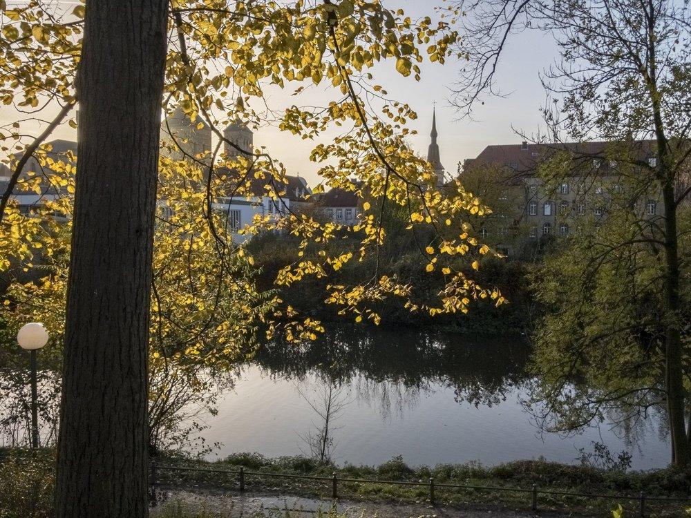 APC_0778-hdr - Herbst ShotoniPhone Autumn Blätter Leaves Sun Sonne Light Threes Licht Bäume Baum Stadt Osnabrück.jpg