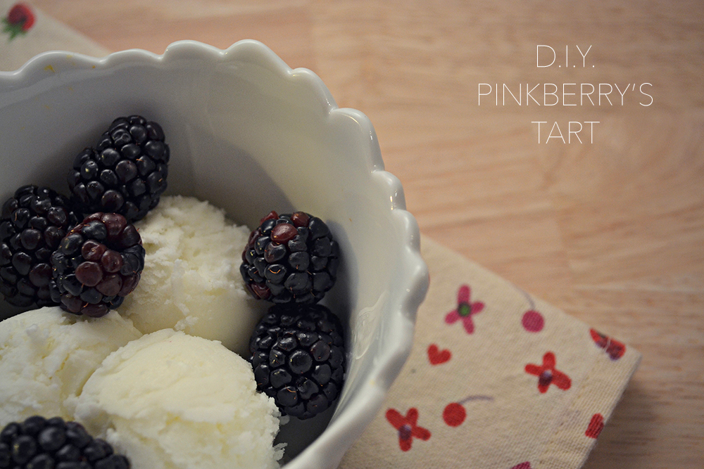 DIY_PINKBERRY_1