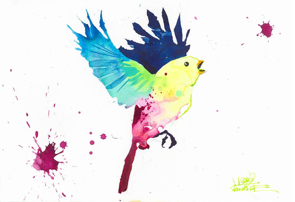 Bird Study 5