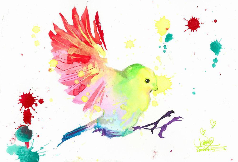 Bird Study 6