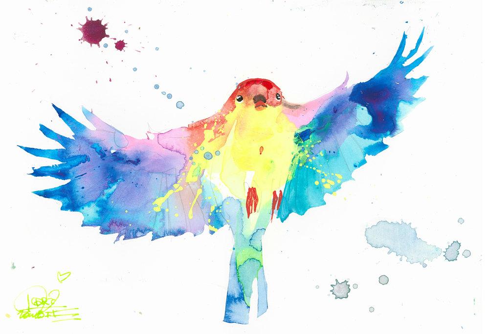 Bird Study 7