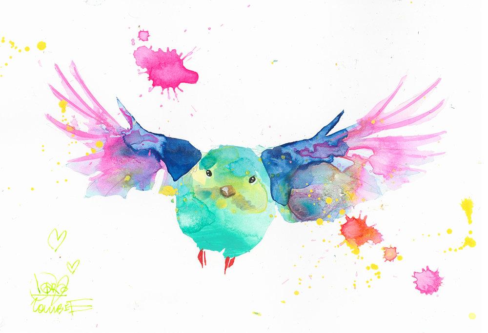 Bird Study 9