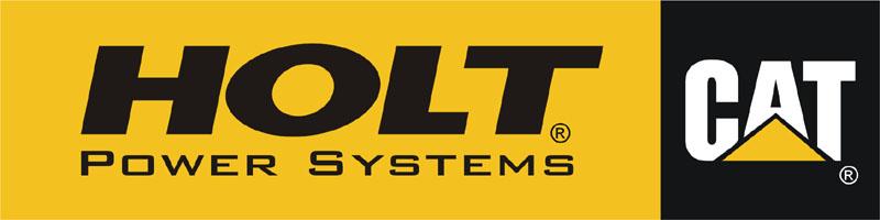 Official Holt PSD logo 3-18-03.jpg