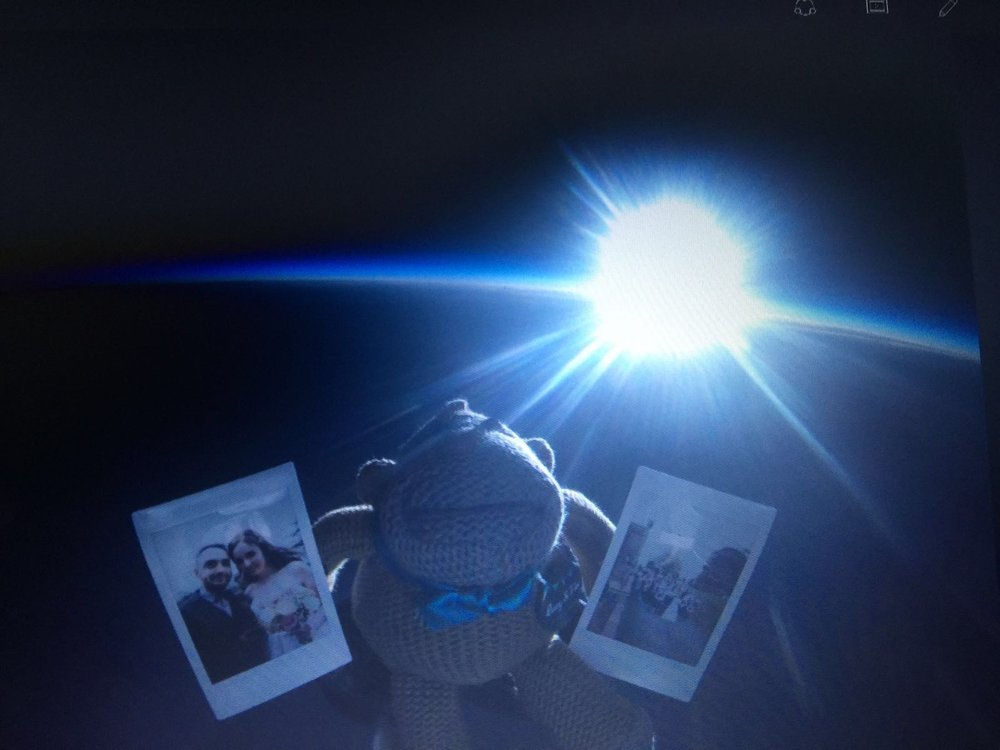 Albert watching the sunset in space after an eventful day
