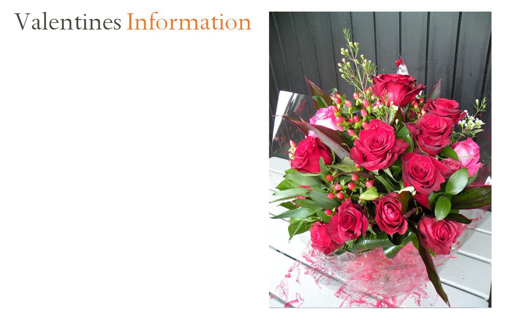 Valentines_Information.jpg