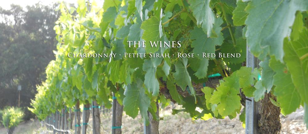altman_the_wines.jpg