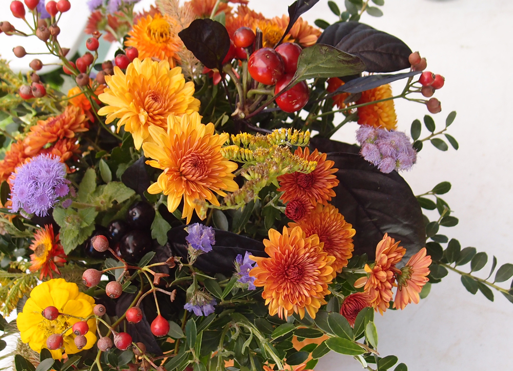 October flowers & fruits.jpg