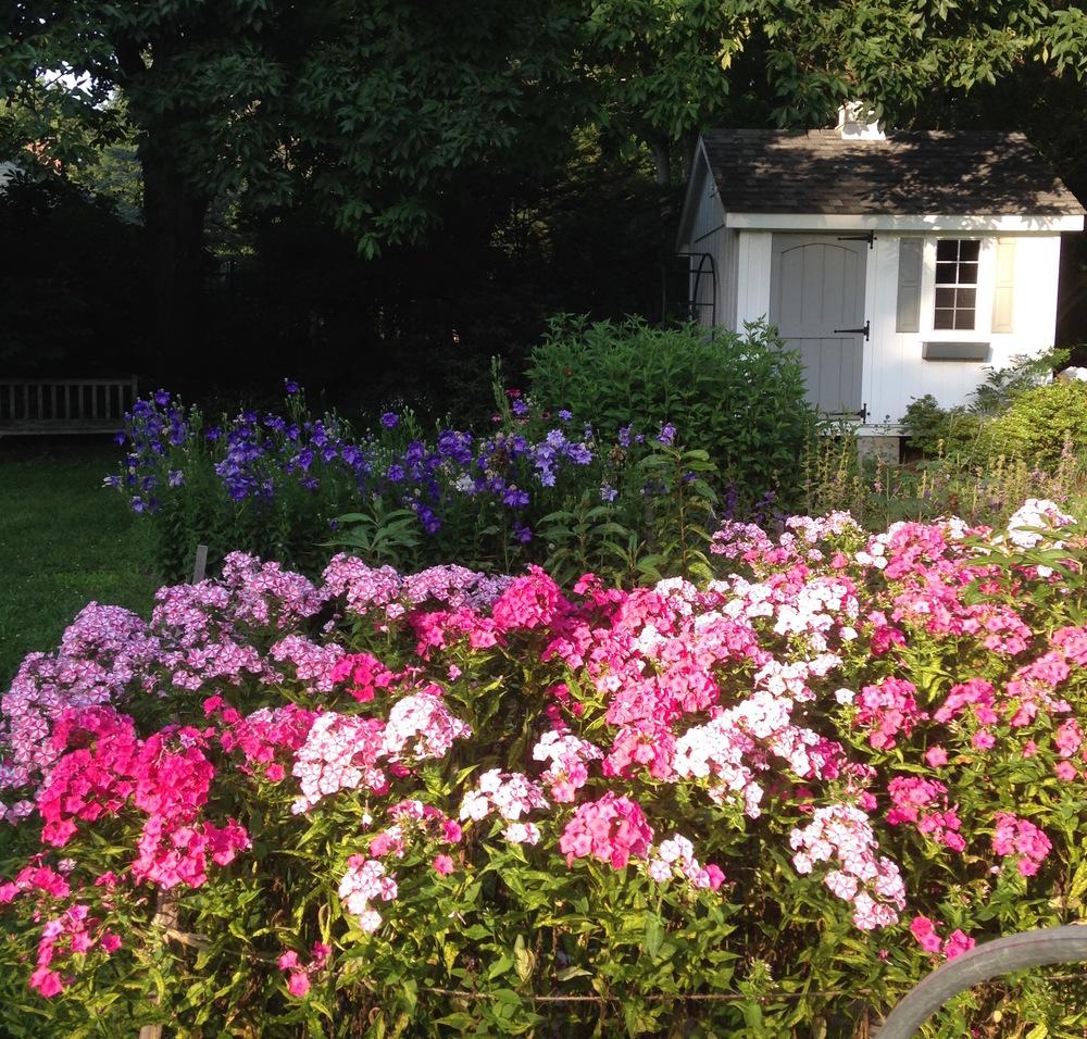 PerennialGardening.jpg