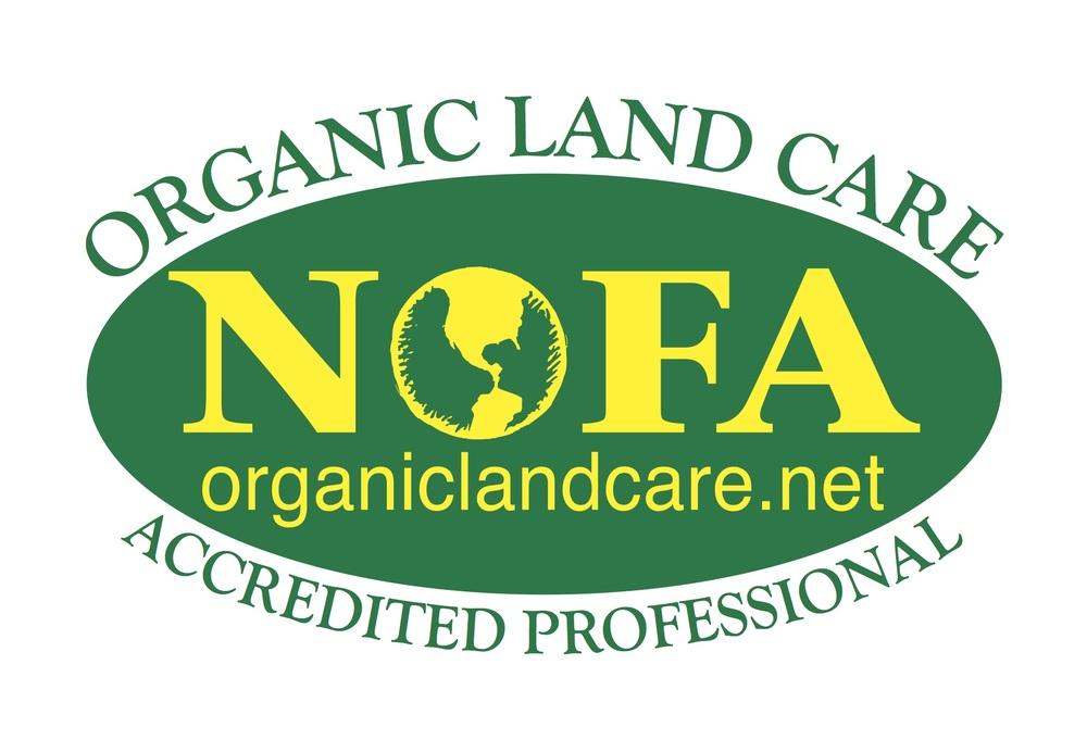 Print Logo - Accredited Professional copy.jpg