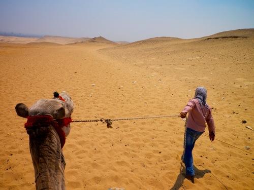 camelGuideGiza