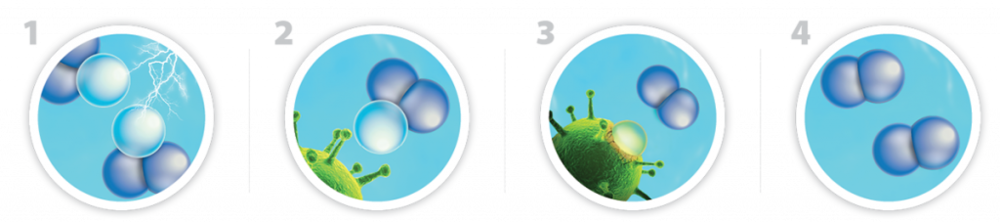 1. Inside the lotus® unit, oxygen from the air is safely turned into ozone then infused into ordinary tap water.  2. The ozone is attracted to germs, stains and bacteria.  3. Harmless to people, the ozone quickly attacks and eliminates contaminants it comes in contact with. 4. Only pure oxygen and water remain after the ozone cleans and sanitizes.