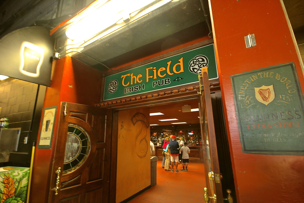 The Field Pub