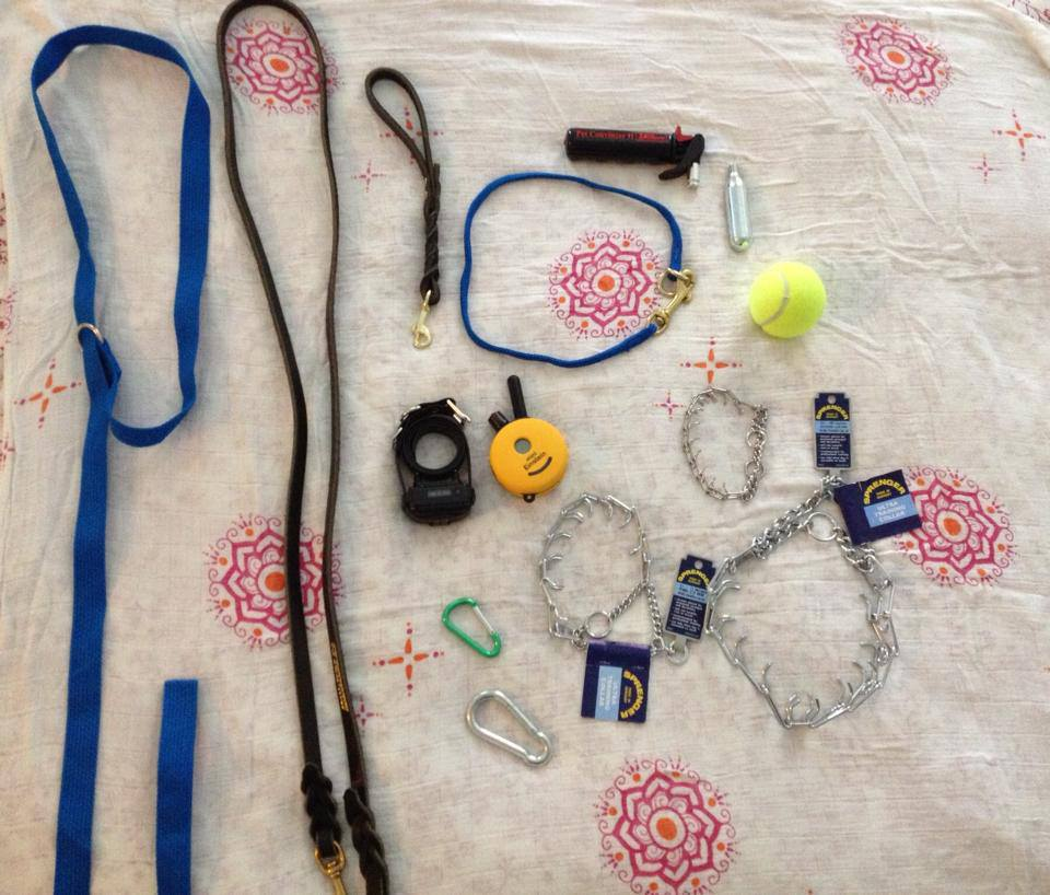 These are various training tools I use. Starting from the left: Slip lead, leather leash, leather traffic leash, nylon dominant dog collar, pet convincer, Einstein mini remote collar, carabiners large & small, prong collars small, medium, large, and a tennis ball. Each of these items can be used safely and effectively to train a calm family dog. I highly recommend them.