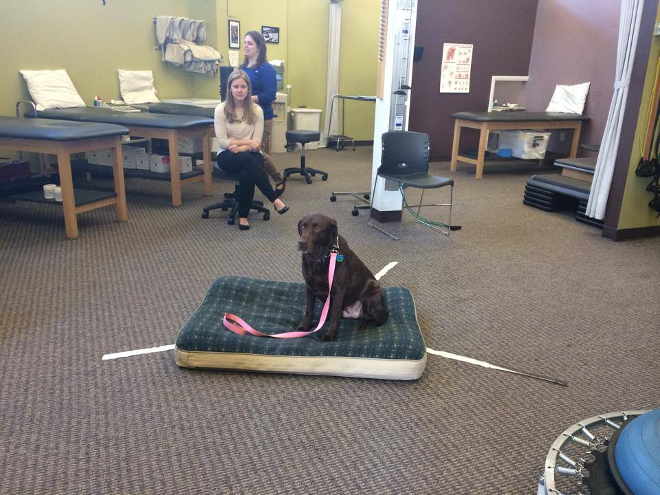 Zoe working at the PT office.jpg