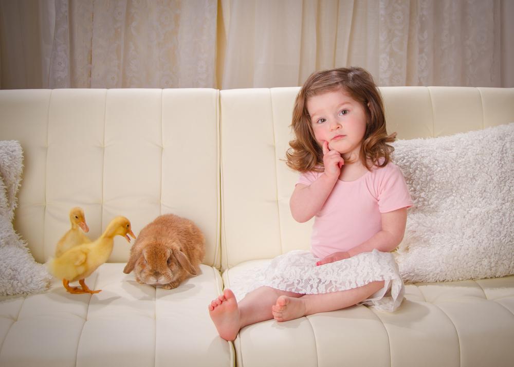 portage michigan photographer - bunny2.jpg