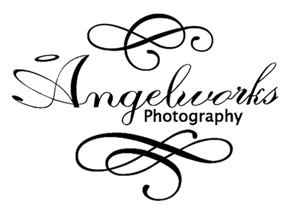 Angelworks Photography : Portage Area's Premiere Photographer