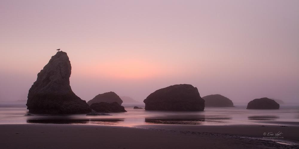 Bandon, Foggy Sunset (Seagull's View)