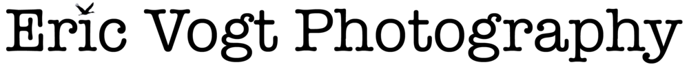 EVP Black Logo 1500w