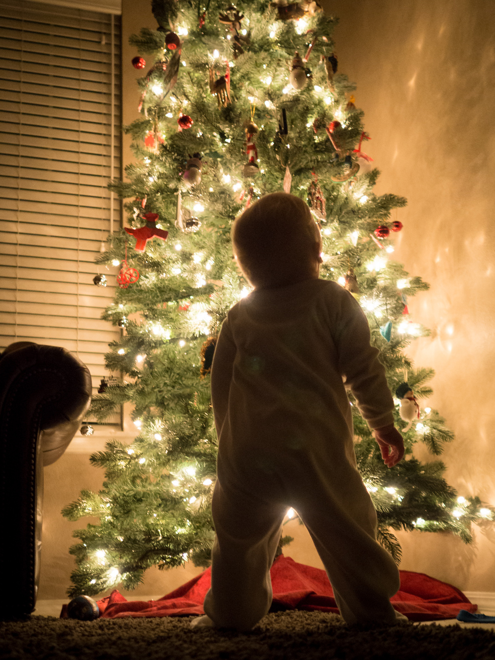 Our little daughter taking in the Christmas tree - photo by Traci Vogt