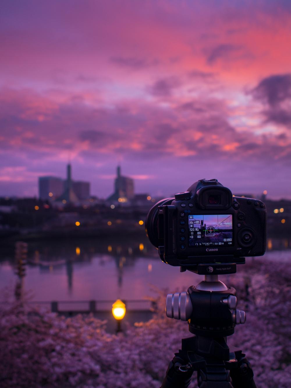 Photographer's Dream