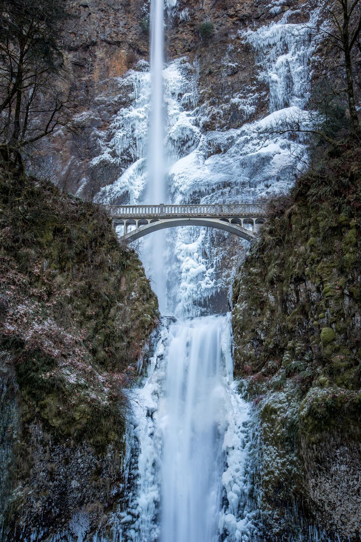 Icy Multnomah