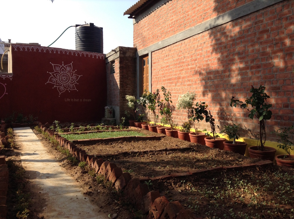 All vegetables planted and flowers arranged.