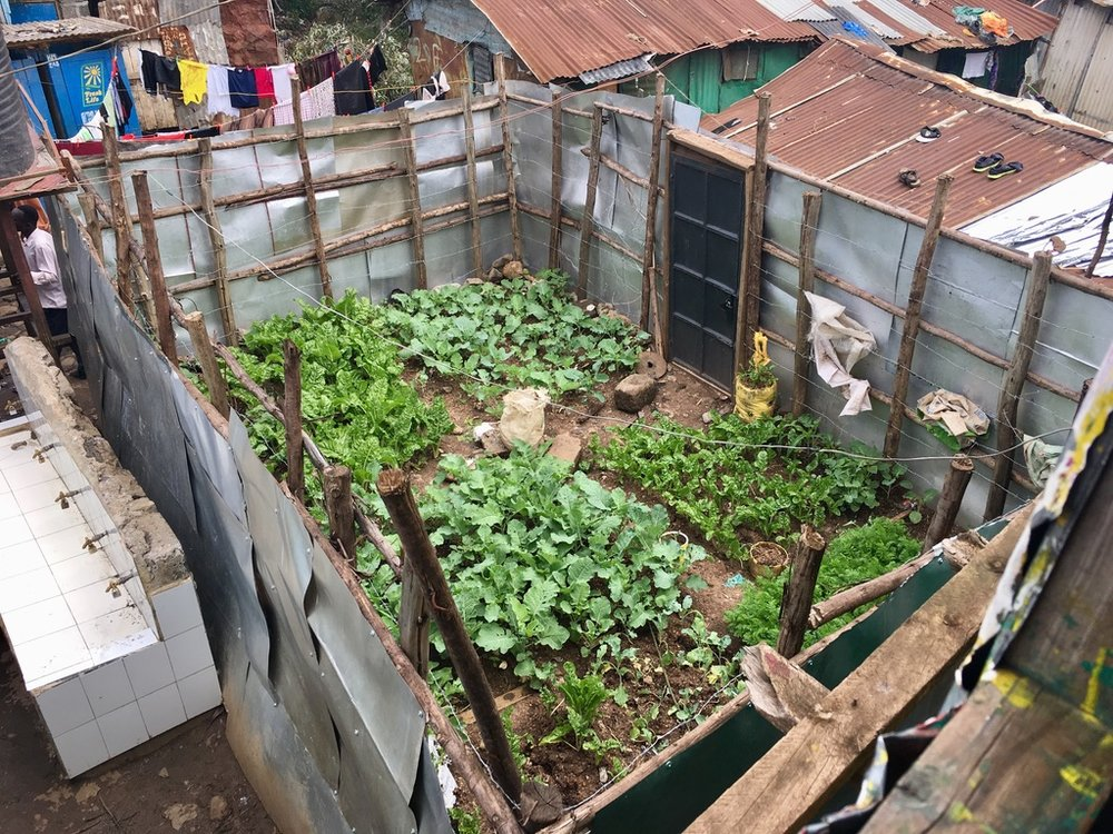 Malezi Centre Urban Farm
