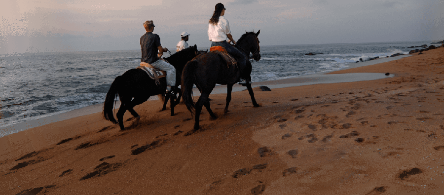 horse-riding-chacala.png