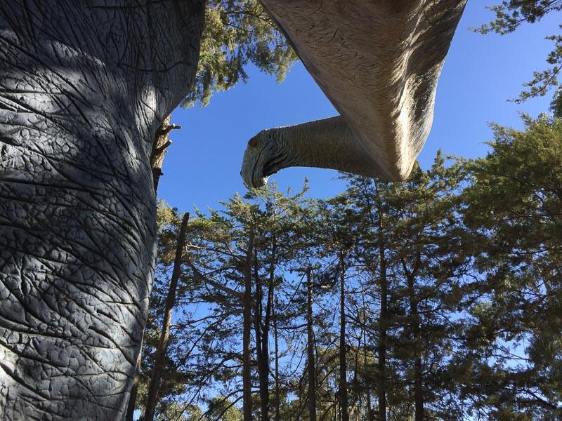 brontosaurus_parque_cretacico_sucre_argentina.jpg