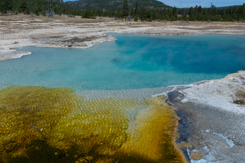 geothermal_pond_yellowstone_national_park.jpg