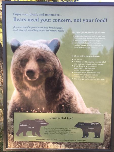 bear_warning_3_yellowstone_national_park.jpg
