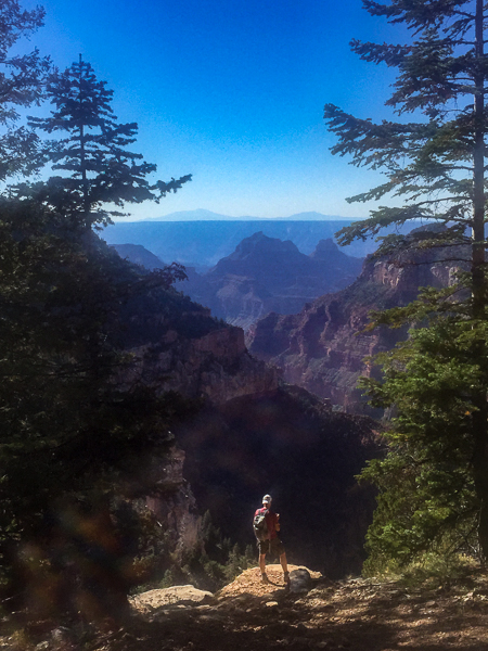 widforss-trail_north_rim_grand_canyon.jpg