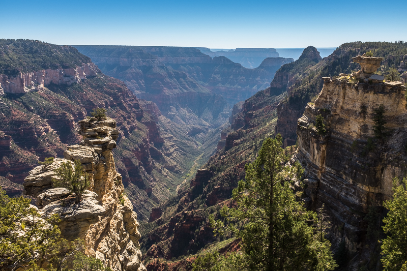 canyon_view_north_rim_grand_canyon_national_park.jpg