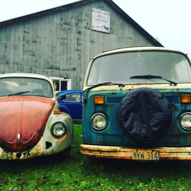 vw_beetle_and_kombi_graveyard.jpg