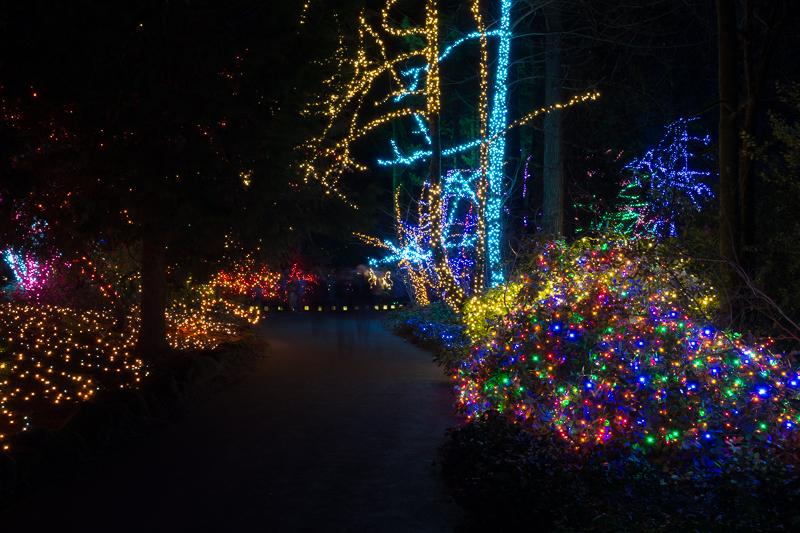 catholic_christmas_grotto.jpg