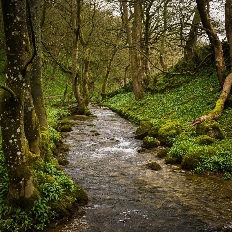 river_Janets_Foss.jpg