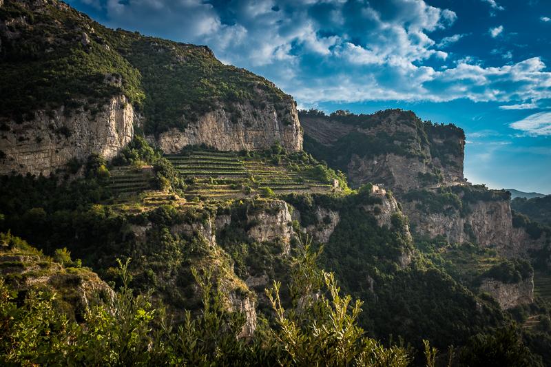 path_of_the_gods_vineyards.jpg