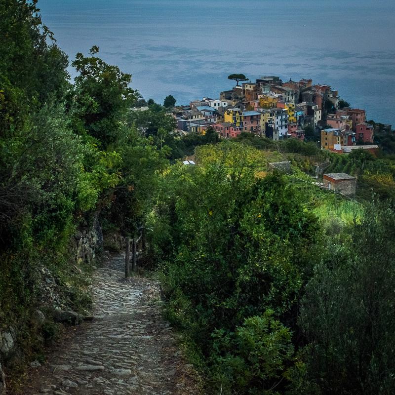 view_from_above_corniglia.jpg