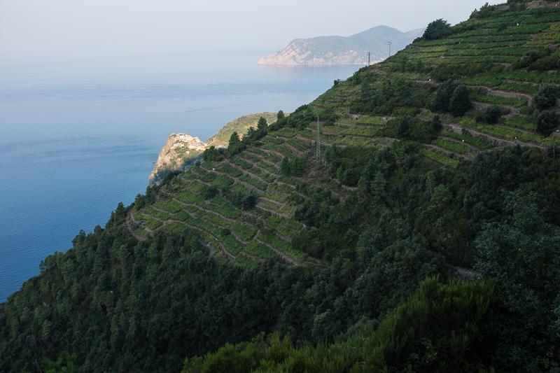 cinque_terre_coastal_view.jpg