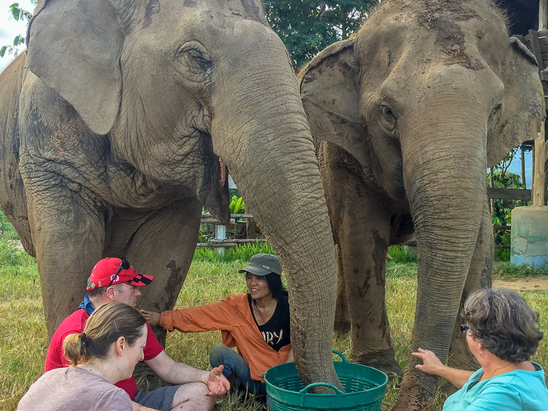 A magical moment with Lek, the founder of Elephant Nature Park