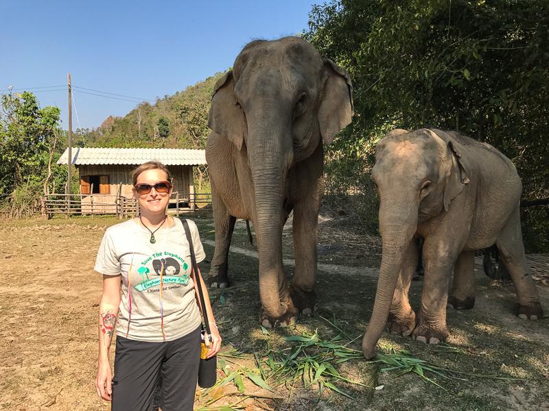 elephants_up_close