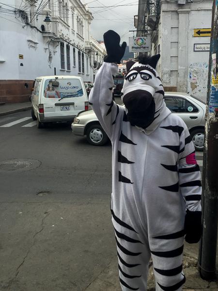zebra_helping_children_cross_the_raod_sucre_boliva.jpg