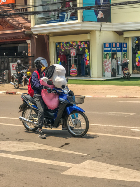 snoopy_goes_for_a_ride_vientiane.jpg