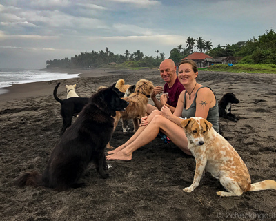 julie_steve_beach_dogs_bali.jpg