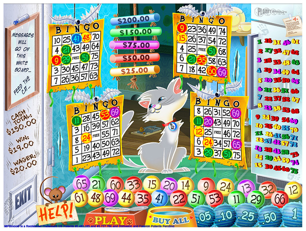 Kitty Kash 24 Number Bingo Game Concept